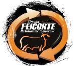 Circuito Feicorte - Tocantins (2013)
