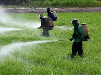Study-Links-Pesticides-to-High-Depression-Rates